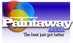 paintaway logo